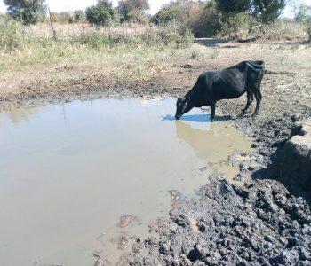 Borehole location, Zambia